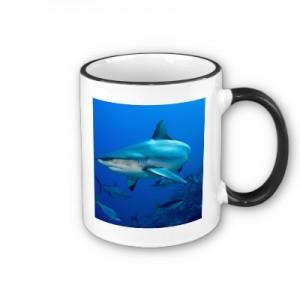 Shark Drink